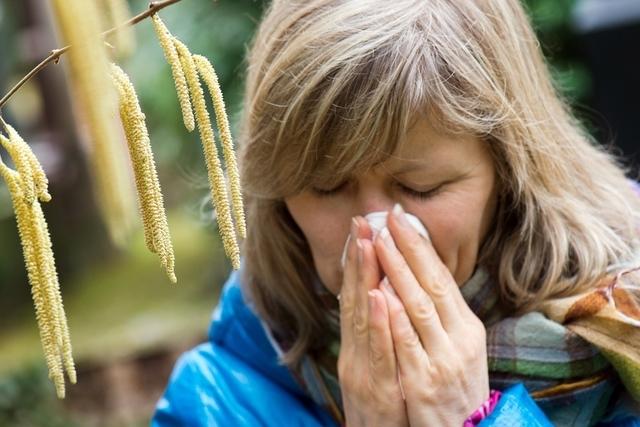 Écologie  Écologie  Après le froid et la neige, le pollen!
