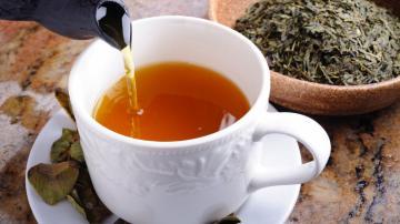 Sante Sante Le thé vert, un atout pour réduire les résistances antibiotiques ?