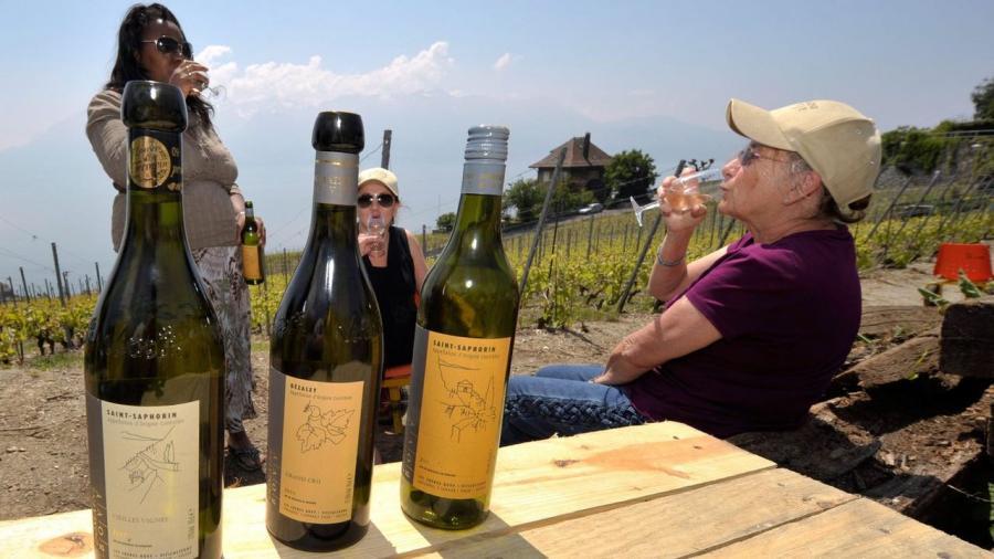 News News La consommation de vin recule mais la part de production suisse augmente